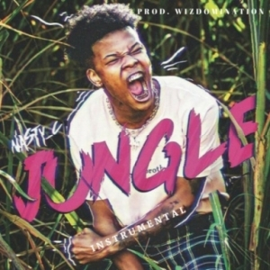 Instrumental: Nasty C - Jungle